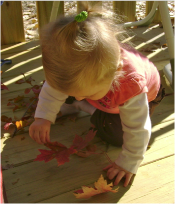 baby_leaves_on_deck